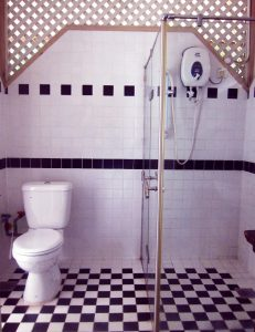 Toilet and shower, black and white tiles, clear glass shower stall