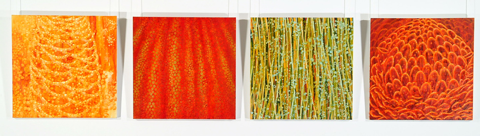 Anne Morrison, From 'Hybrid series' 1. Hive 2. Pod 3. Spore 4. Scale Size: 71.5 x 71.5cm (each work) Medium: oil on canvas