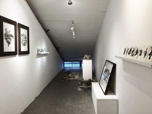Solo Exhibition - Installation View (2016)